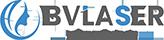 Bestview Logo